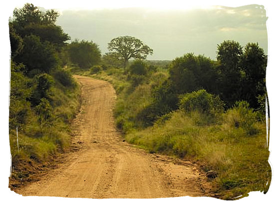 evening-sun-on-dusty-road-ce-talamati